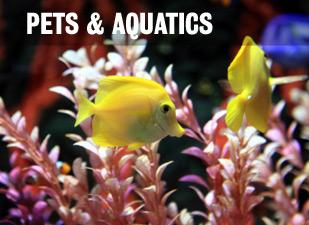 Pets, Aquatics and Wildlife