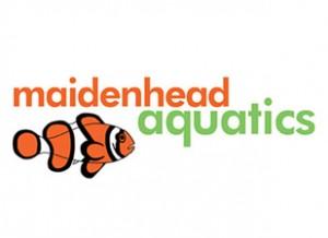 maidenhead-aquatics