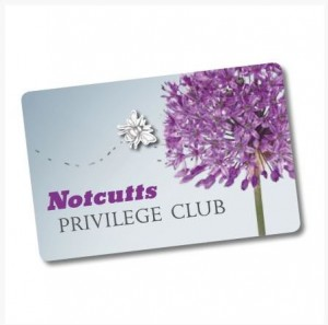 notcutts club